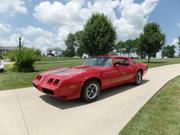 1981 pontiac Pontiac: Firebird TRANS AM
