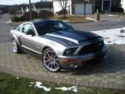 2008 Shelby GT500COUPE